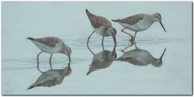 Sandpipers - acrylic pating